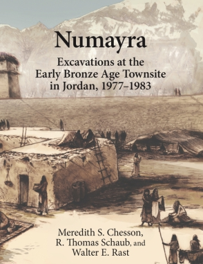 Cover for the book Numayra