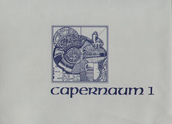 Cover image for Excavations at Capernaum: Volume 1: 1978-1982 Edited by Vassilios Tzaferis