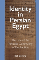 Cover image for Identity in Persian Egypt: The Fate of the Yehudite Community of Elephantine By Bob Becking